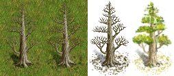 dead-great-tree2-versions.png