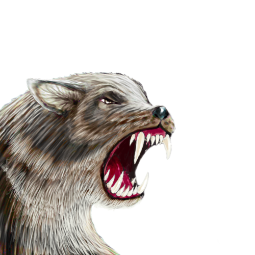 dire-wolf-smaller.png