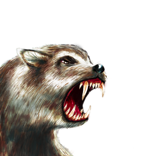 dire-wolf-smallerB.png