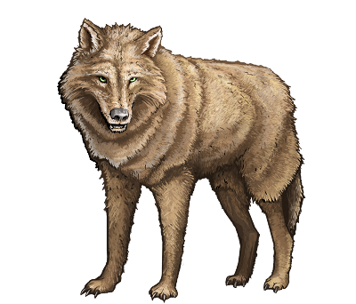wolf-red.png